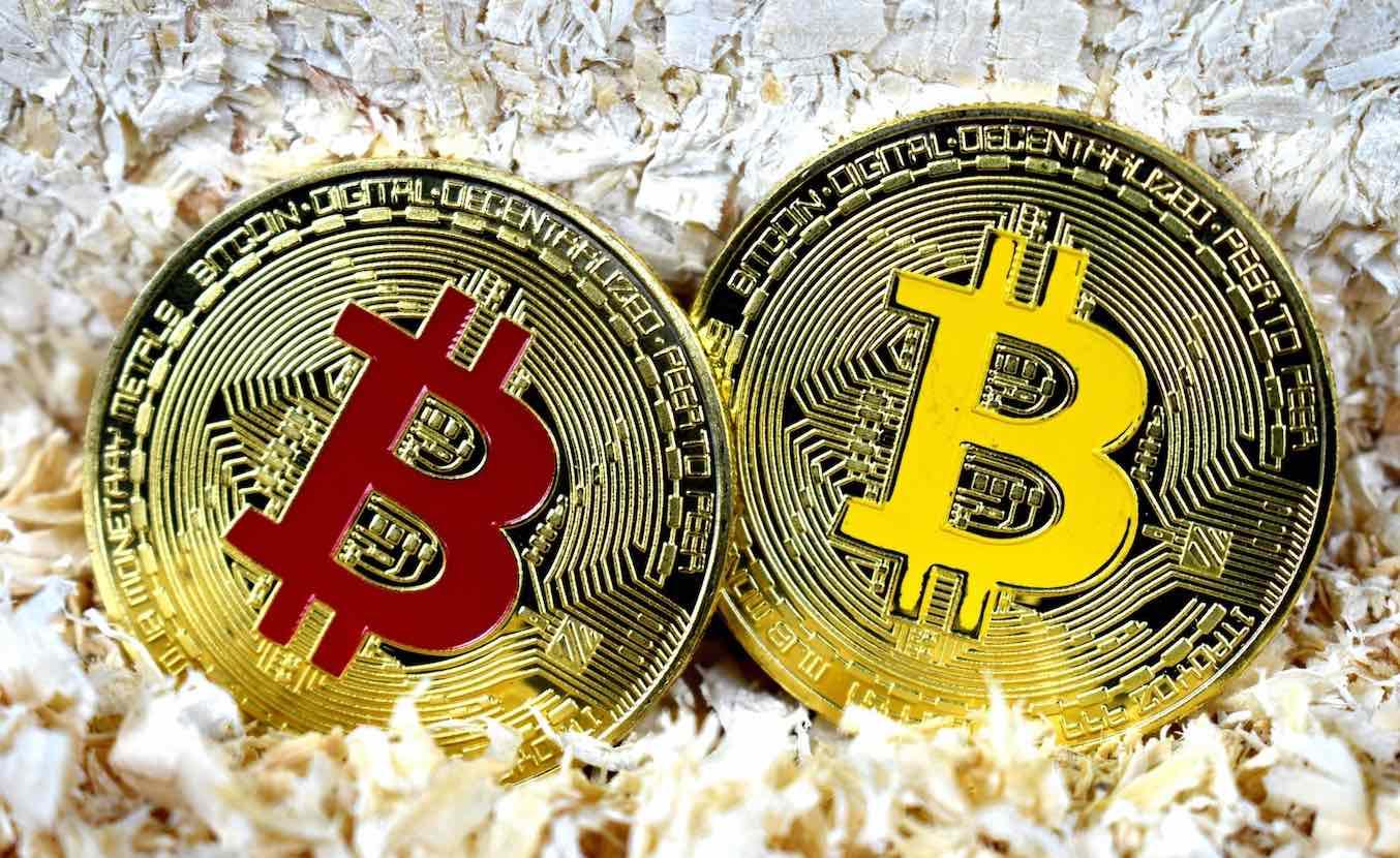 btc bch bitcoins