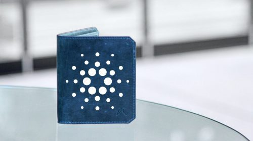 wallet-cardano-unsplash-canva