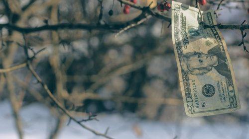 avalanche-financiamiento-unsplash
