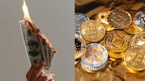 dolar cripto unsplash canva
