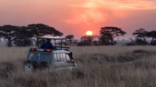 africa-tour-unsplash