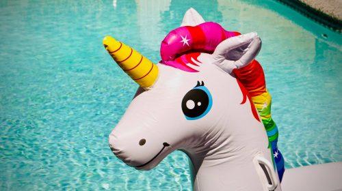 unicornio-unsplash
